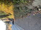 Lots of leaves and small amount of mud on footway opposite 62 Breybrooke road