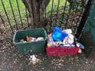 Rubbish dumped by the tree in front of the crescent near 256 Lionel Road North