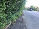 Entire road from church downwards has overgrown over footpath and road. Some on bend and it dangerous while people are walking. Under this hedge is a tarmac footpath. During school term parent park along here as school has as them to park away from school for safety reason.
