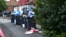 Rubbish/recycling bins overflowing & permanently on the pavement, 25th August